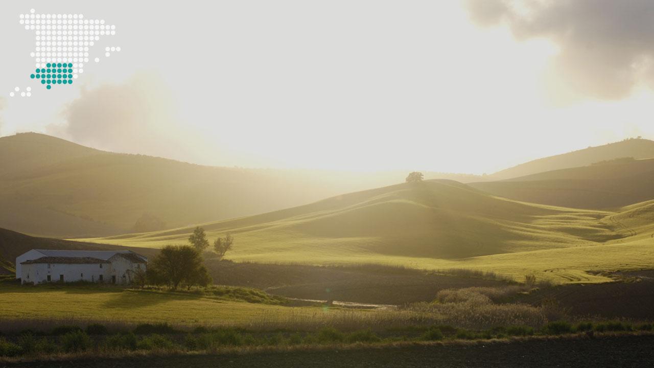 landscapes_10